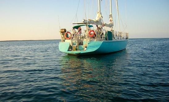 Dream Catcher Schooner Charter In Key West