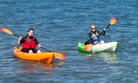 Kayaks And Sups Rental
