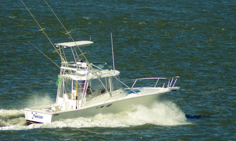 "32ft ""Reelizer"" Luhrs Sportfisherman Boat Charter in Longport, New Jersey"