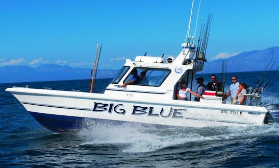 Sportsfishing Charter In Cape Town, Western Cape, South Africa