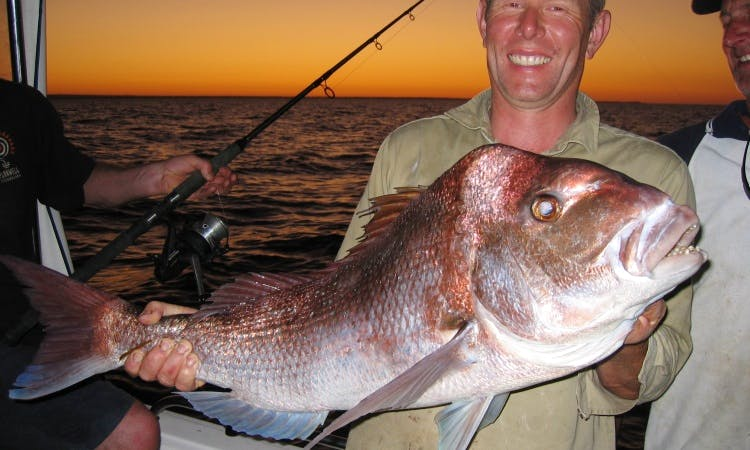 Point Turton's Reel Screamer Fishing Charters