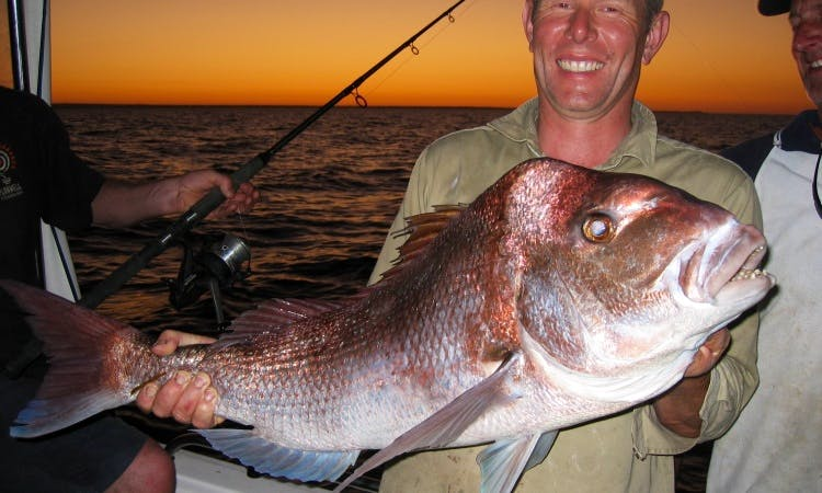 Point Turton's Reel Screamer Fishing Charters