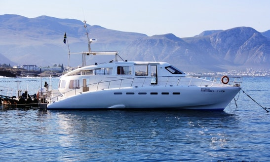 Charter 18m Catamaran From Hermanus, South Africa