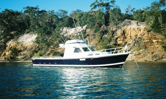 Charter 41' Motor Yacht Northshore In Gold Coast, Australia