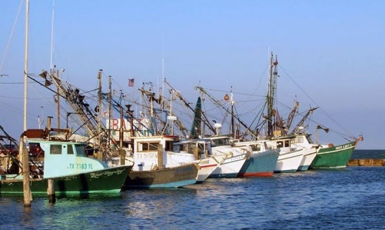24ft Cuddy Cabin Fishing Boat Charters in Rockport, Texas