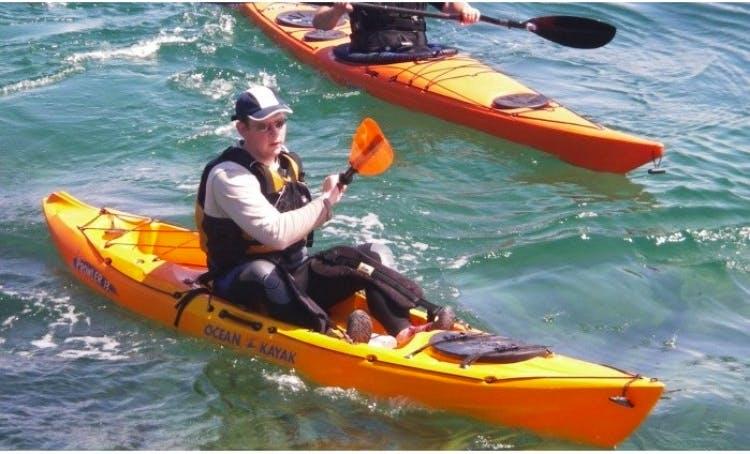 Sit-On-Top Kayak Daily Rental in Shepherdstown, West Virginia