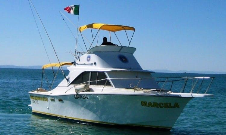 28' Cabin Cruiser Charter in La Paz