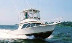Saltwater Fishing Charters with Captain Jim and Neil in Reoboth, Delaware