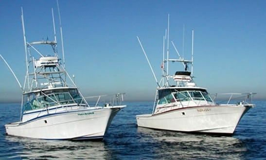 Newport, Ca Bongo Fishing Boat
