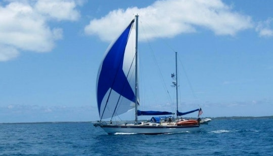Come Be Bewitched On Sea Witch Sailing Charters