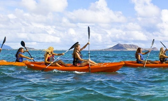 Rent Kayak In Honolulu