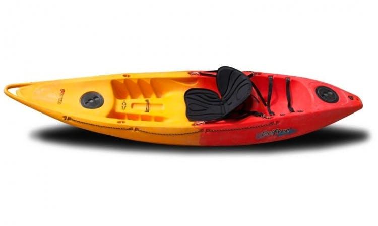 Rent Feelfree Single Sit on Top Kayak- Nomad