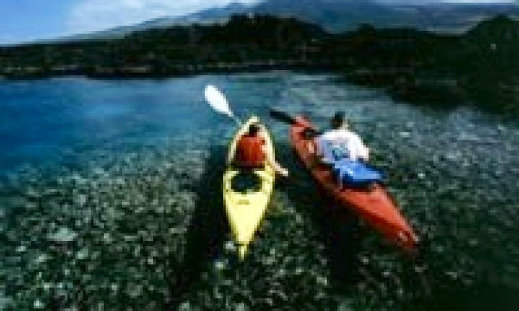 Kayak Rentals & Tours in Maui County