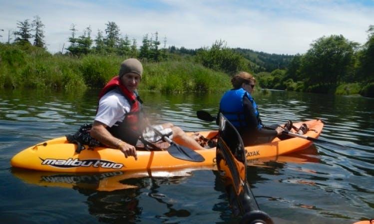Kayak Tours on the Salmon River