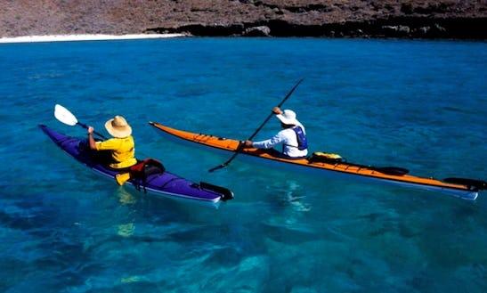 Sea Kayak Trips & Whale Watching Baja California