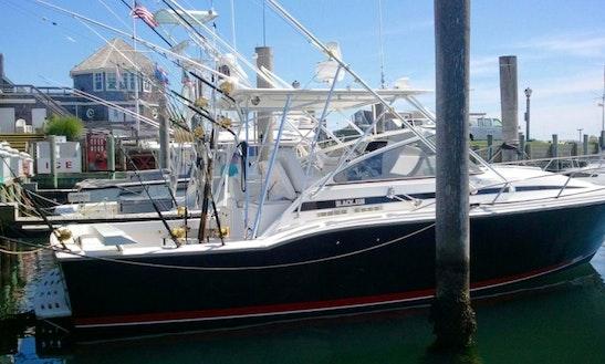 Cabo San Lucas 31' Blackfin Sportfishing Charter