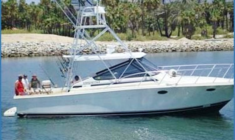"38' Sportfishing Charter ""Doña Meche"" Cabo San Lucas"