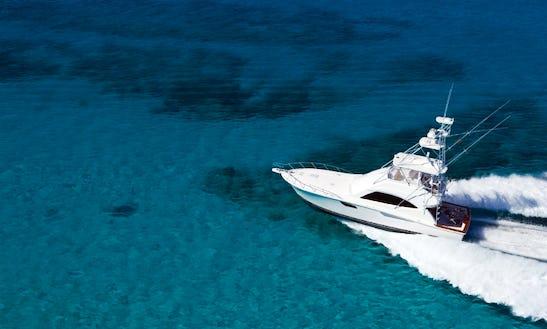 54' Sportfishing Charter Cabo San Lucas