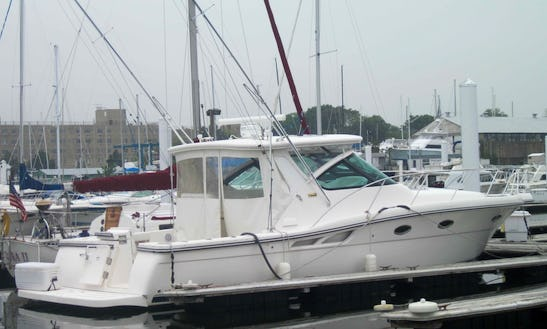 Private Yacht For Charter From City Island