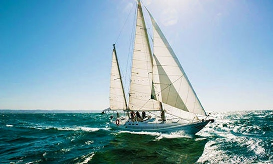 Experience An Offshore Sailing In Durban, South Africa