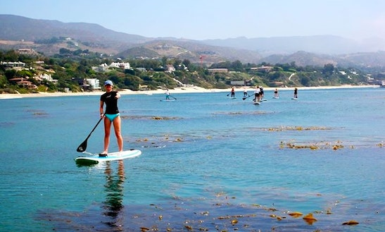 Stand Up Paddleboard Rental In Venice