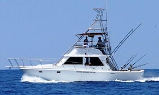 40' Sport Fisherman Fishing Boat In Kailua-kona, Hawaii