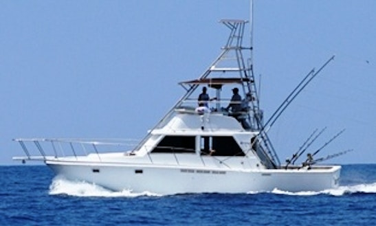 40' Sport Fisherman Fishing Boat In Kailua-kona, Hawaii