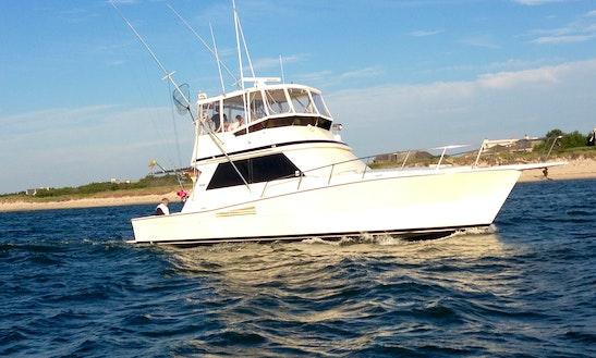 Sport Fisherman Rental In Hampton Bays