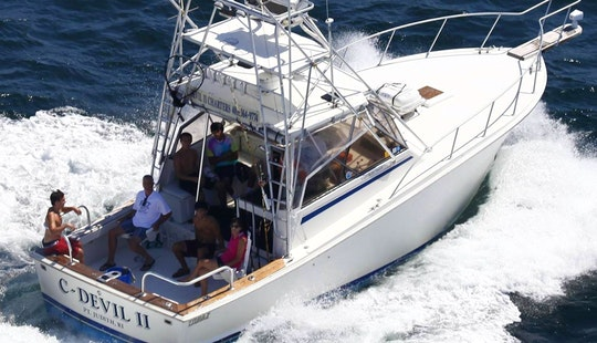 Charter On 32ft