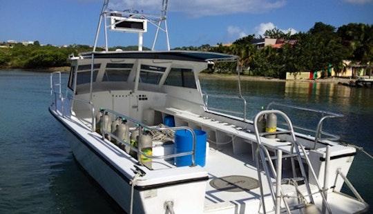 Motor Yacht Rental In True Blue