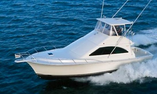 43' Ocean Yacht Sport Fisherman In Atlantic City, New Jersey United States