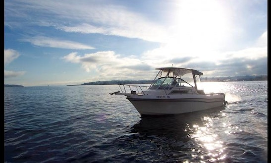 Saltwater & Freshwater Fishing Charters In British Columbia