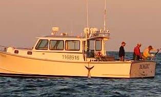 36' Sport Fisherman Whale Watching in Harwich, Massachusetts