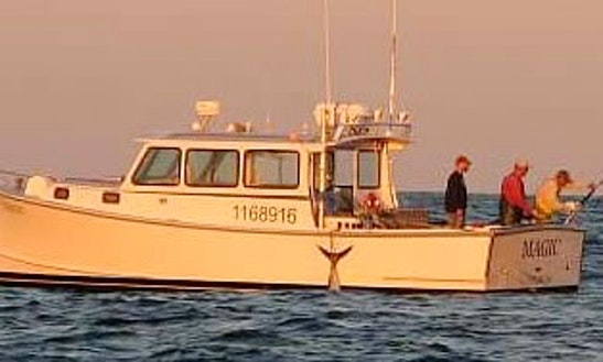36' Sport Fisherman Whale Watching In Harwich, Massachusetts