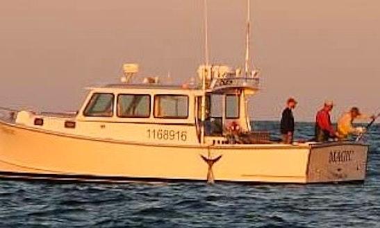 Cape Cod Sea Duck Hunting In Harwich