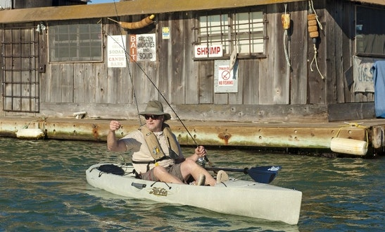 Hobie Paddle Kayak Rental In Niantic