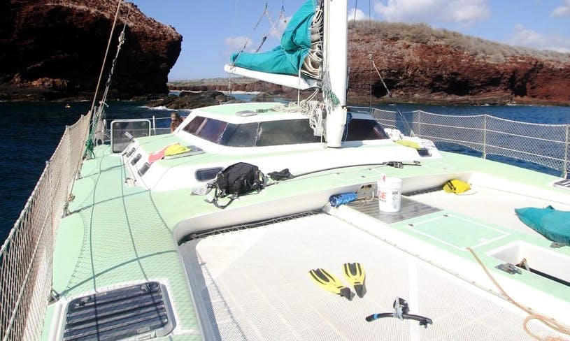 "Enjoy 47 ft ""Paragon II"" Sailing Catamaran Charter in Kula, Hawaii"
