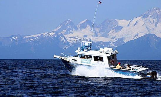 Enjoy Fishing On 34' Cuddy Cabin Charter In Ninilchik, Alaska