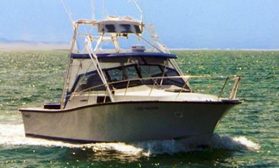 Enjoy Fishing In Falmouth, Massachusetts With Captain Don