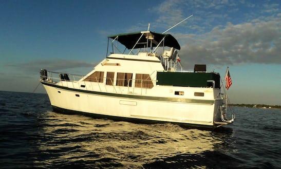 Charter 40ft Trawler In Aventura, Florida