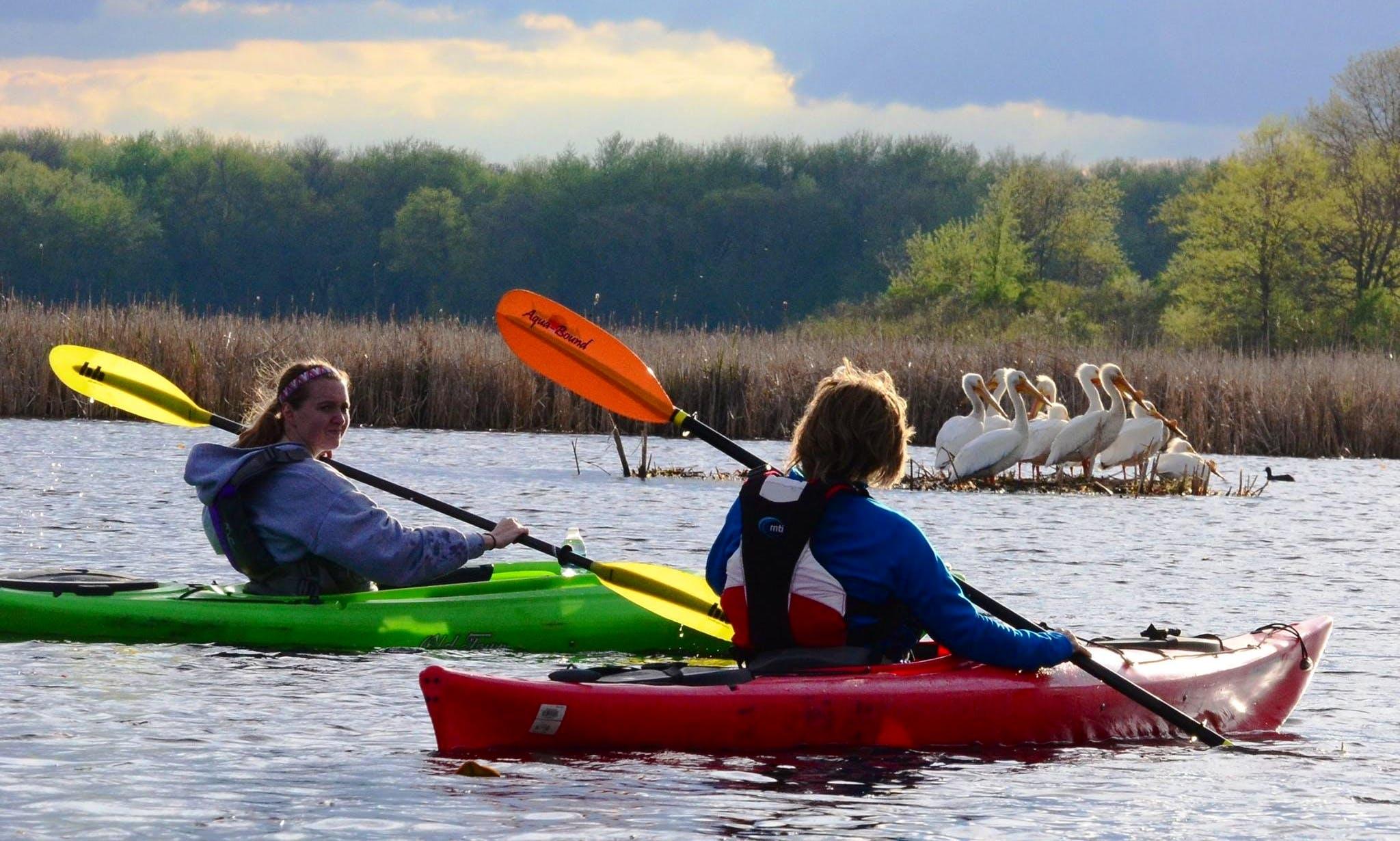 Kayak Rental in Waverly