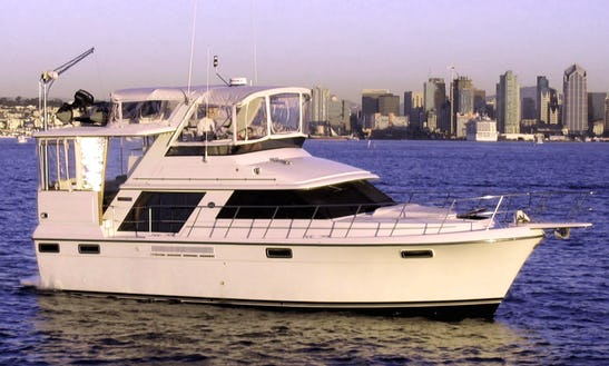 47ft Carver Yacht Captained Charter In San Diego