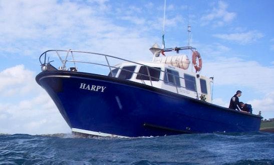Kinsale Deep Sea Angling