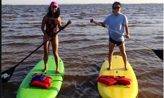 Paddleboard Rental In Gulfport