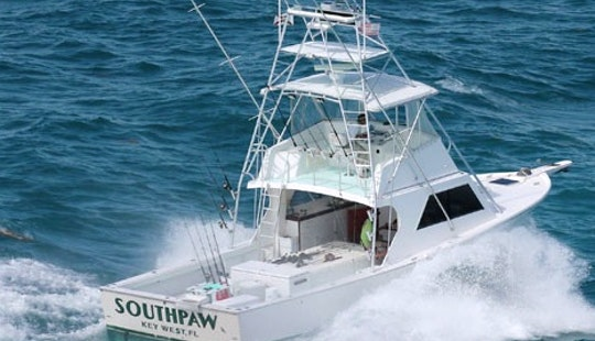 Fishing Charter On 43ft