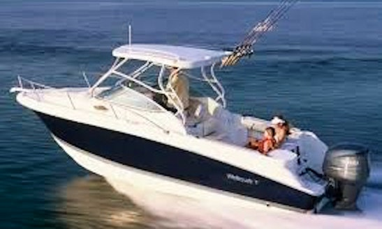 33 Foot Wellcraft Coastal For Rent