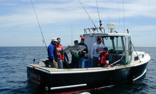 22ft Sportfisherman Boat Charter In Manchester-by-the-sea, Massachusetts