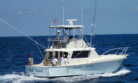 Enjoy 41' Sportfishing Yacht Captained Charter In Miami Beach