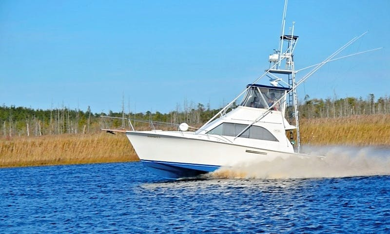"""Fishing Charter On 38ft """"The Island Girl"""" Yacht In Cape May, New Jersey"""