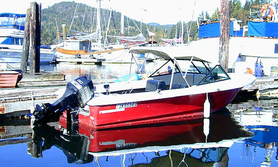 Rent 16' Motorboat In Madeira Park, Bc